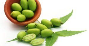 olio di neem proprietà
